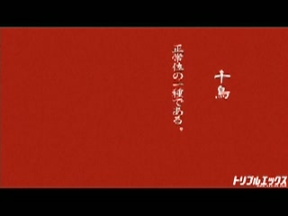桃井早苗 SEX48 The四十八手 vol.02